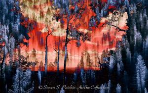 Tapestry Steve Patchin