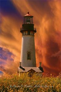 Yaquina Head Steve Patchin